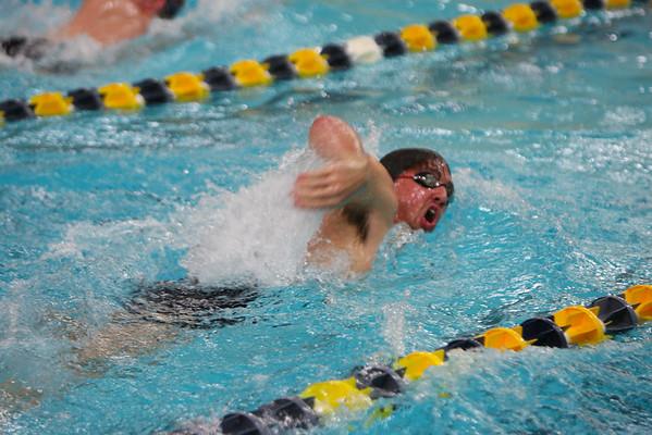 UMASS Dartmouth Invitational Swim and Dive Meet 11-8-14